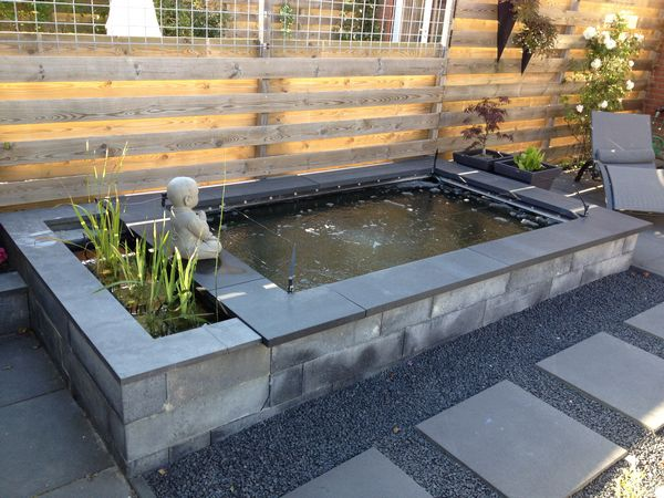 Koi forum voor de beginnende en gevorderde koi hobbyist bekijk onderwerp mijn 8m vijver met - Foto van tuin vijver ...